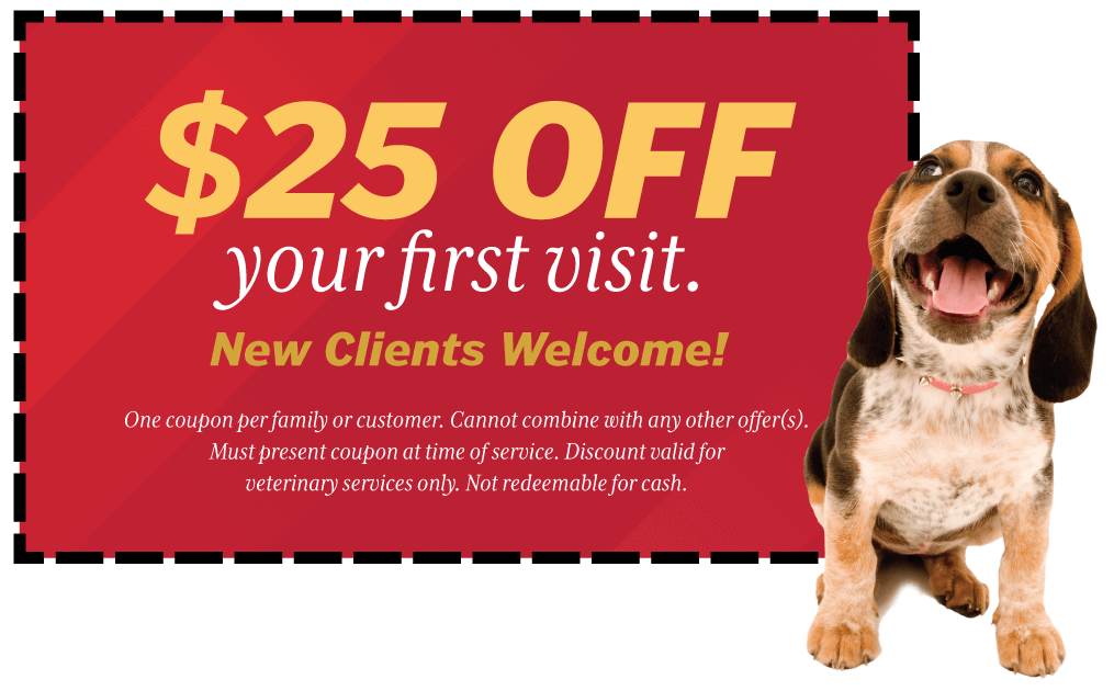 $25 Off Your First Visit